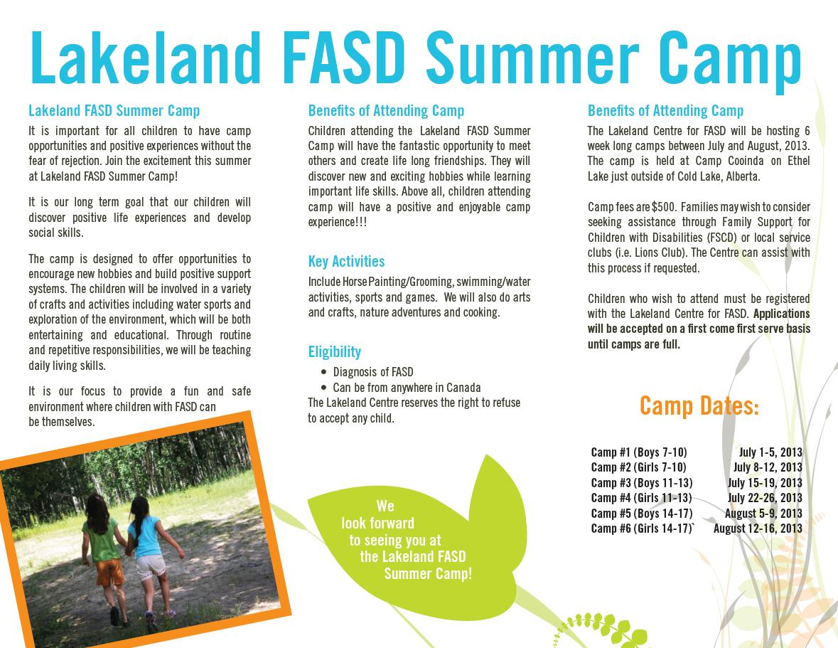 daily living skills fasd interventions across the lifespan camp information